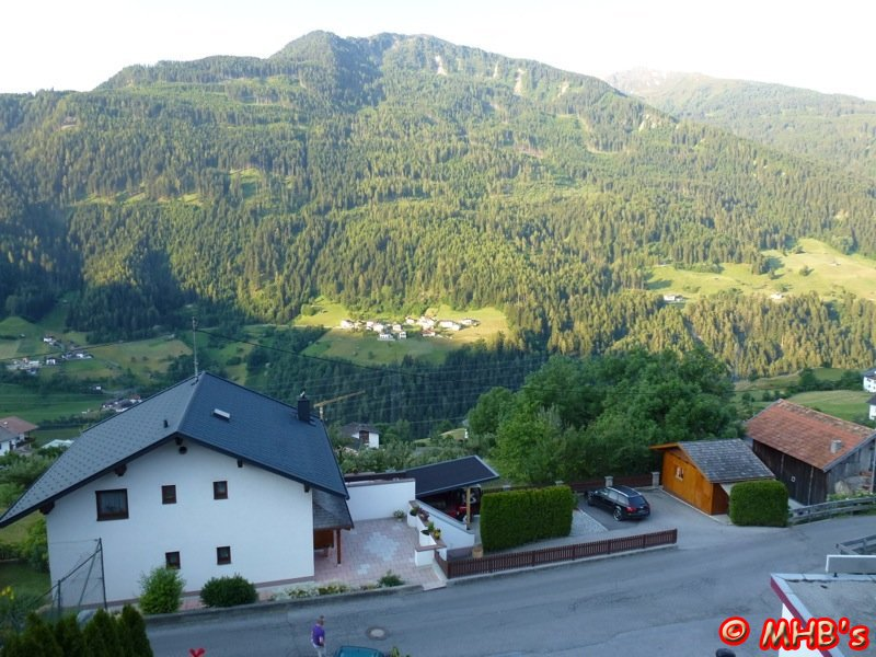 Pinguin_Alpen_06_2014_015