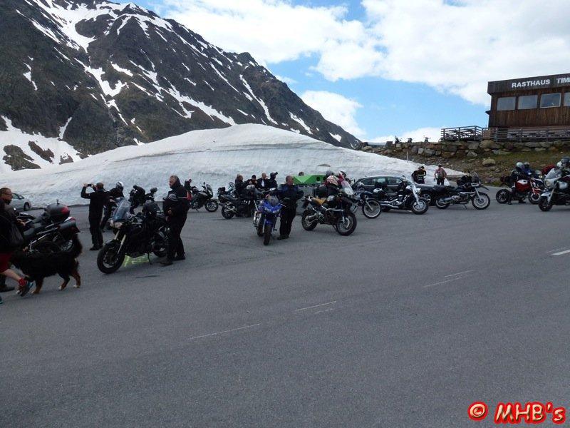 Pinguin_Alpen_06_2014_027