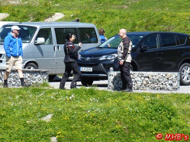 Pinguin_Alpen_06_2014_051